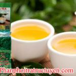 Cách mua trà bắc thái nguyên tại đà nẵng