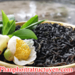 Địa chỉ bán trà bắc thái nguyên ở Tây Ninh